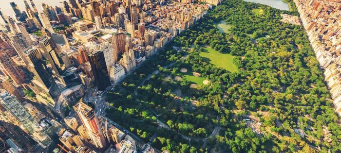 Central Park w Nowym Jorku shutterstock_456997735 ok
