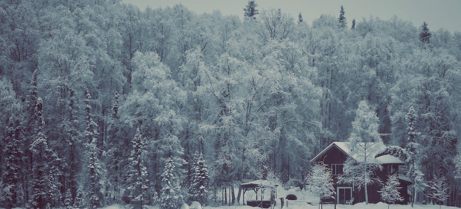 zimowa alaska wycieczka